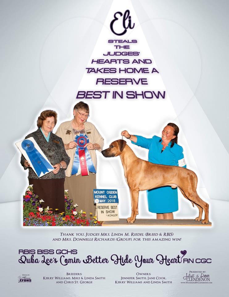 Juba Lee Ridgebacks! Our Show Dogs